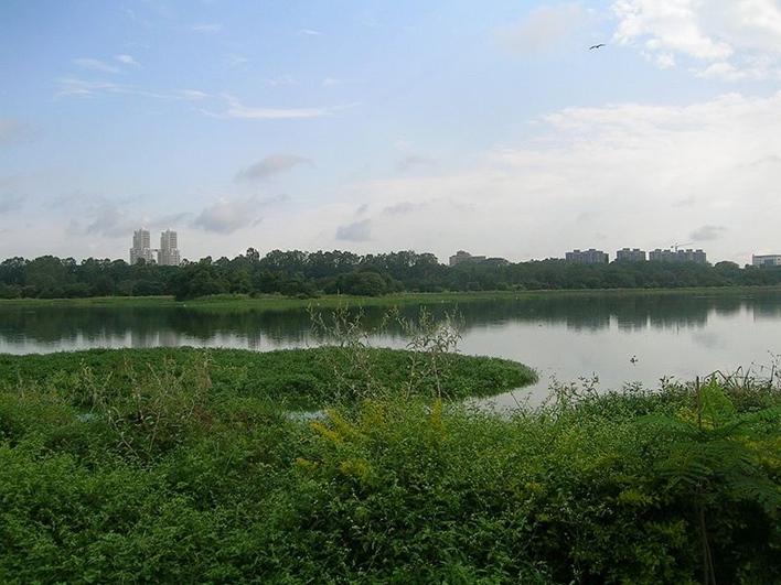 Hebbal Lake, Lakes in Bangalore