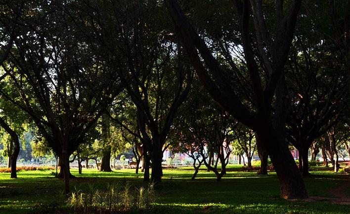 cubbon park, parks in Bangalore
