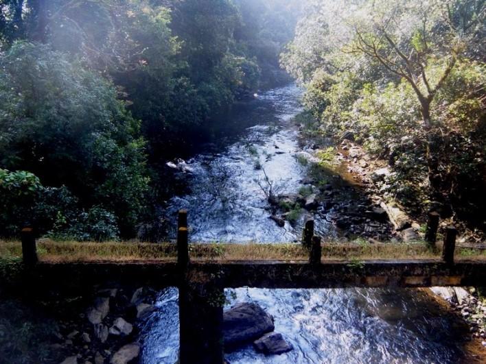 Pushpagiri Wildlife Sanctuary, Coorg