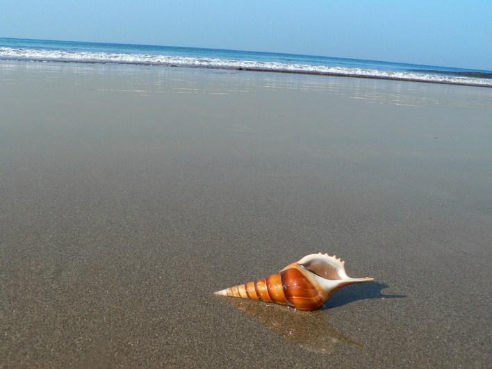 Derebail beach