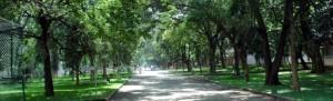 St Johns Medical College, Bangalore