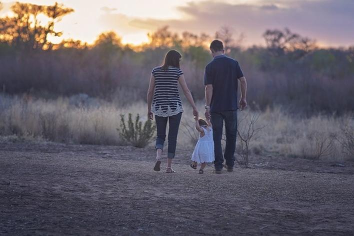 Adoption Trends In Karnataka